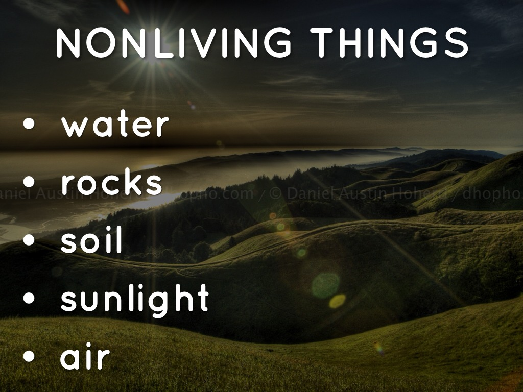 Living And Nonliving Things Video