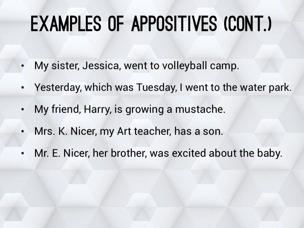 Appositives By Kennedy And Ethan By Nms6thgradela