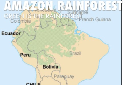 Amazon rainforest map outline 4k pictures 4k pictures full hq where is the amazon rainforest located map facts world map amazon random attachment where is the amazon rainforest located map facts world map amazon x gumiabroncs Images