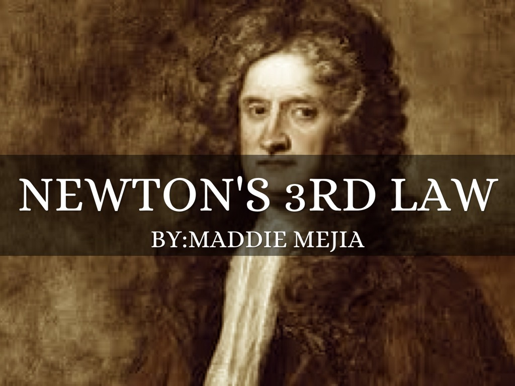 Newton S 3rd Law By Holly Steele