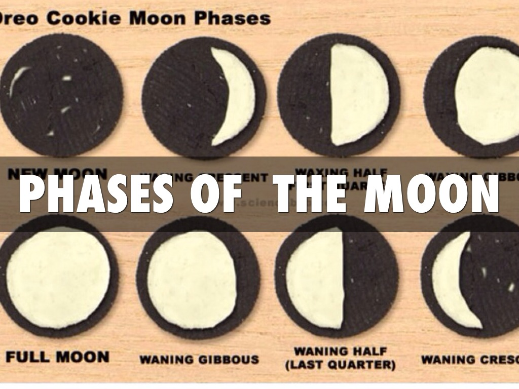 Phases Of The Moon By Green Group