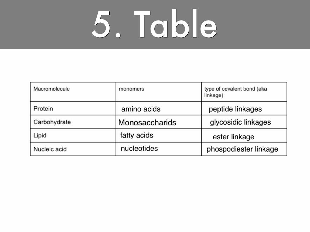Macromolecules By Lawrence Wilson