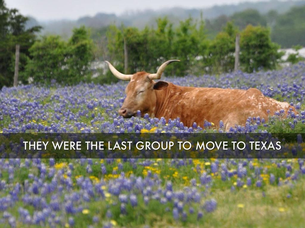 Texas Indains By Eflemingu