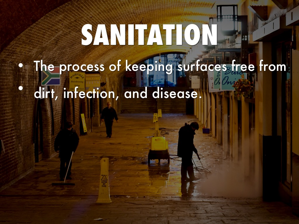 Disinfection And Sanitation By Stephanie King