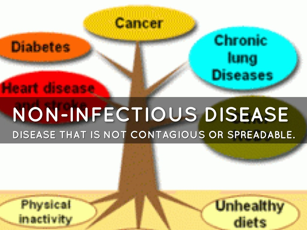 Non Infectious Diseases By Catherineunders