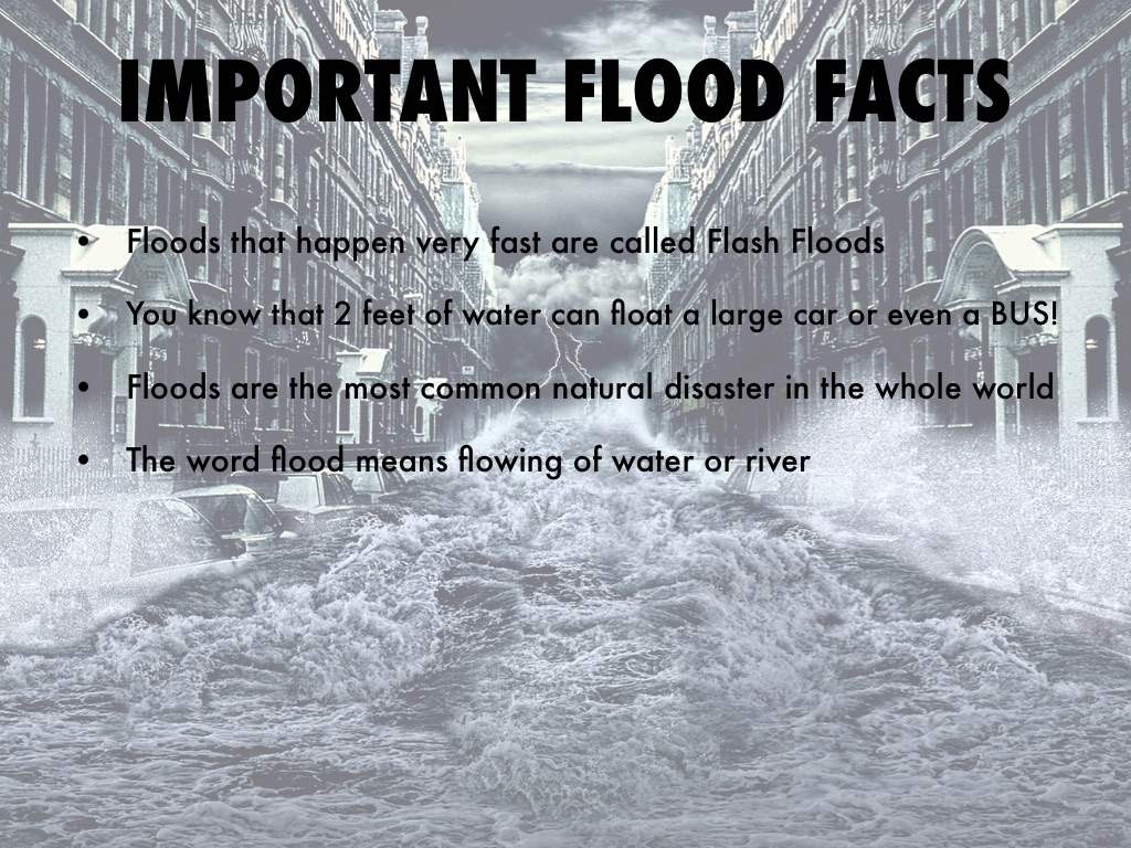 5 Facts About Natural Disasters