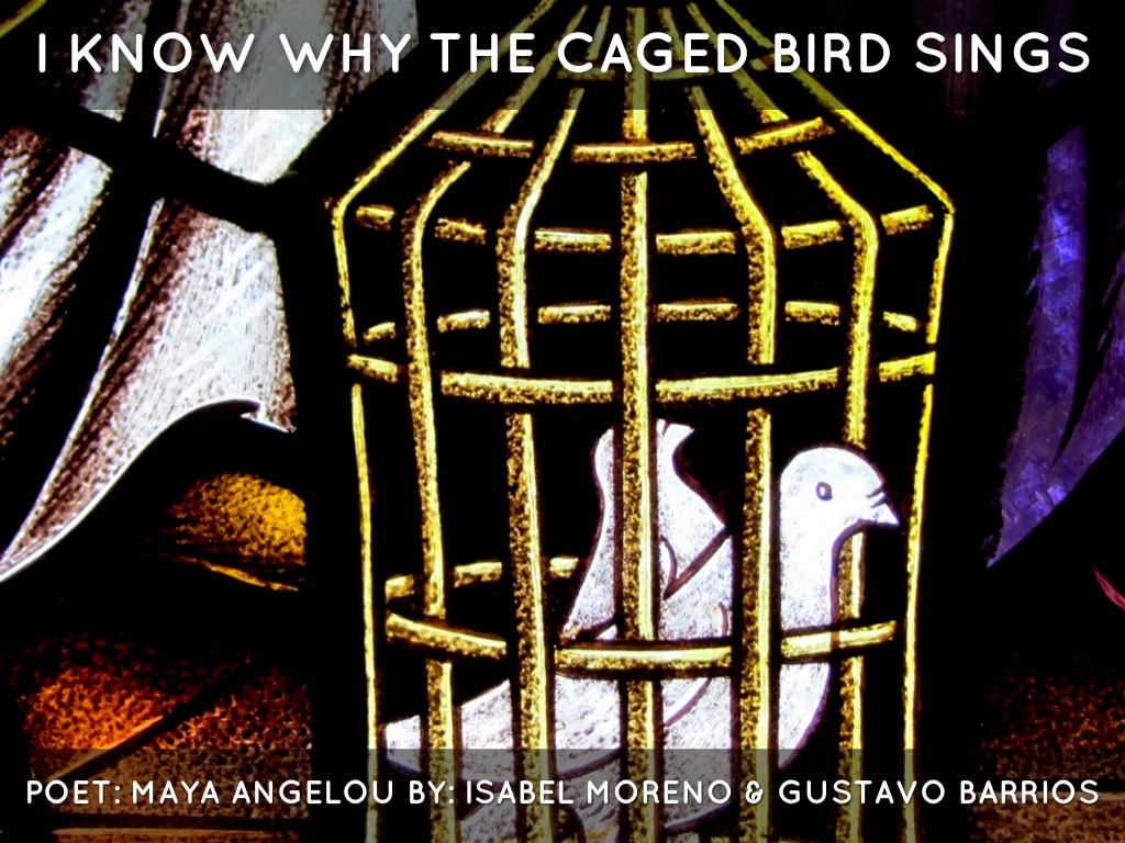 I Know Why The Caged Bird Sings By Isabel Moreno