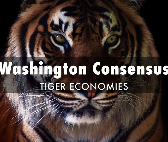 Washington Consensus Tiger Economies