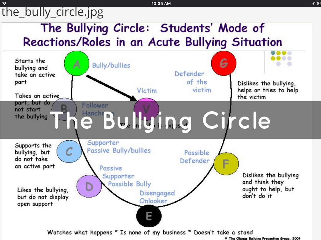 Bullying Circle Diagram