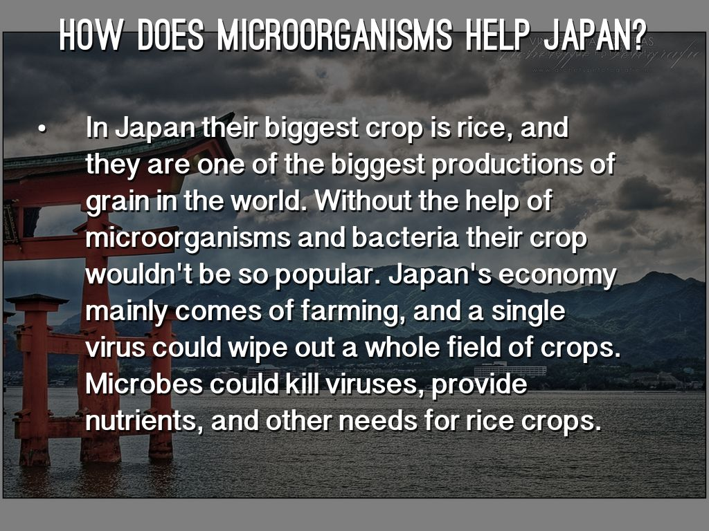Microorganisms Agriculture Amp Biotechnology By Ty