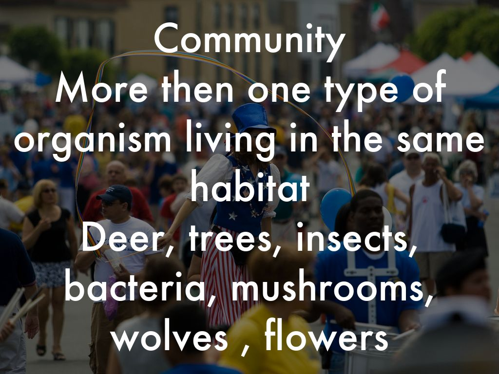 What Is The Difference Between A Population Community