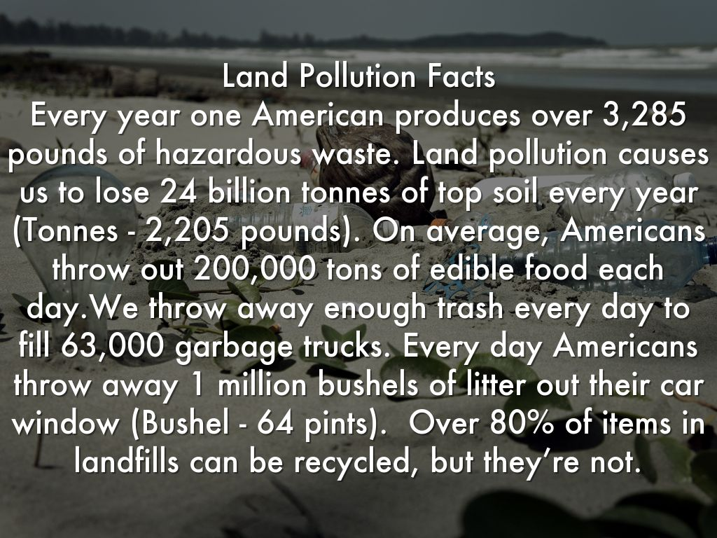 Pollution By Sonic