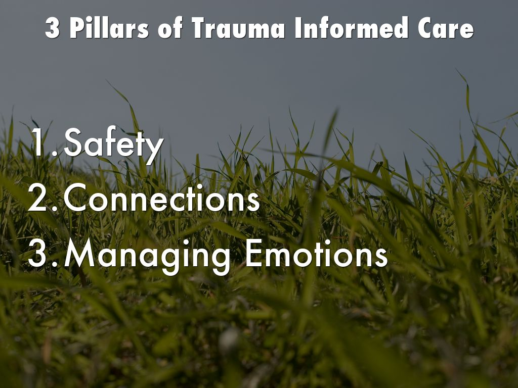 Trauma Brain Development And Tbri By Joyce Carter