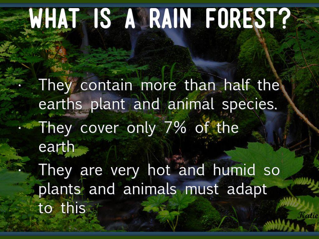 Copy Of Rainforest By Wodarczakstudent