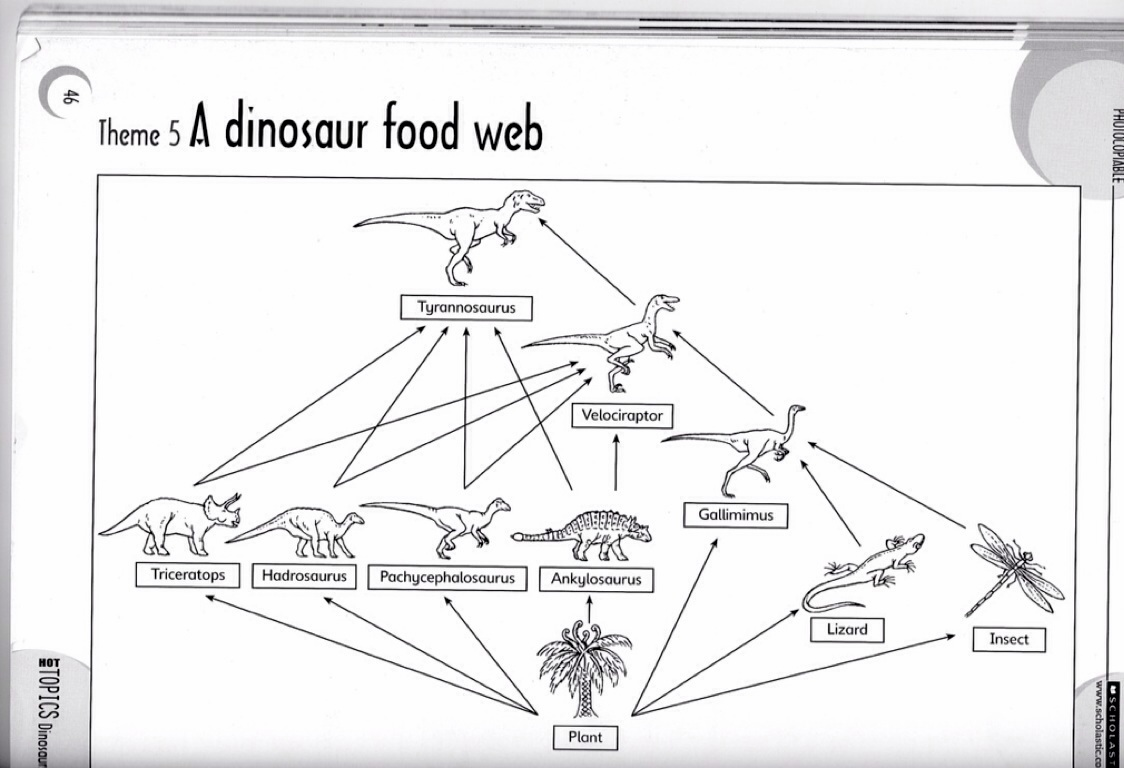 Dinosaur Food Chain