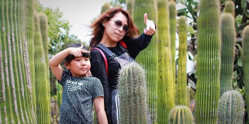 彰化旅遊景點/田尾公路花園、生源仙人掌、田尾波波草,欣賞採買花草園藝的好去處