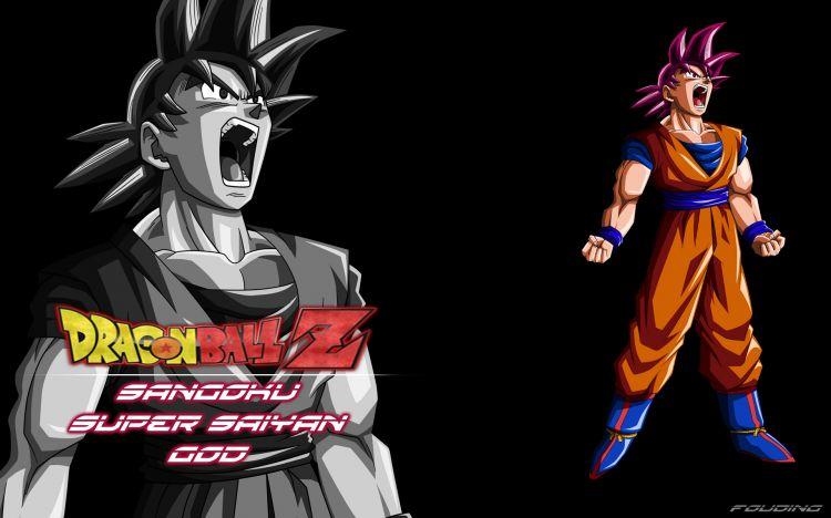 Wallpapers Manga Wallpapers Dragon Ball Z Fond D Ecran Dragon Ball Z Sangoku Super Saiyan God By Fouding Hebus Com