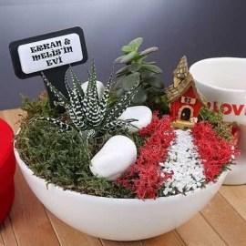 Arkadaşa Özel Yılbaşı Hediyesi Minyatür Bahçe