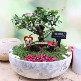 Sevgiliye Hediye Desenli Minyatür Bahçe