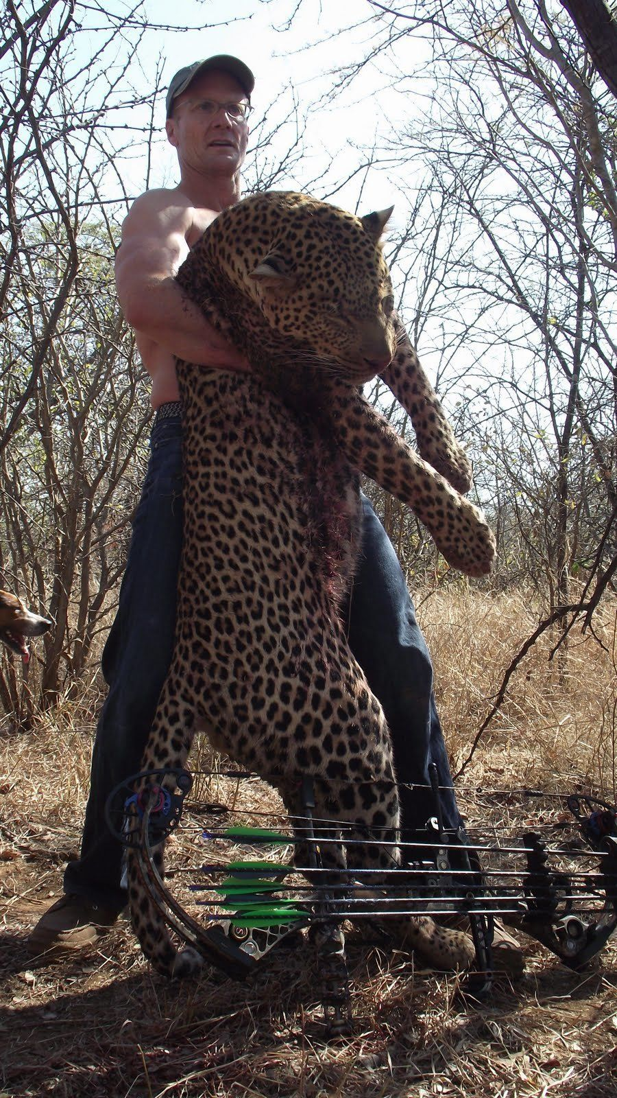 Walter Palmer in an undated photo with a leopard in Zimbabwe.