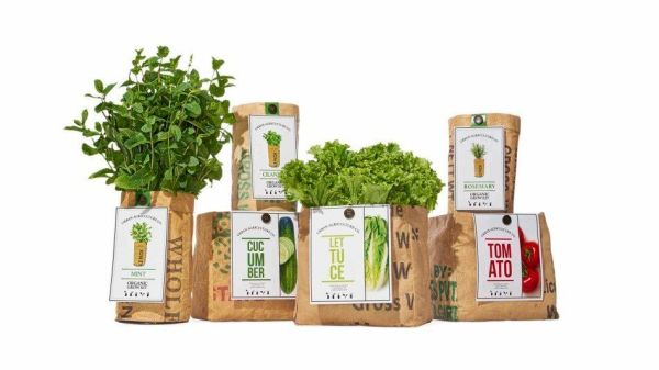 Urban Agriculture organic growing kits from Oprah's 2016 List of Gifts