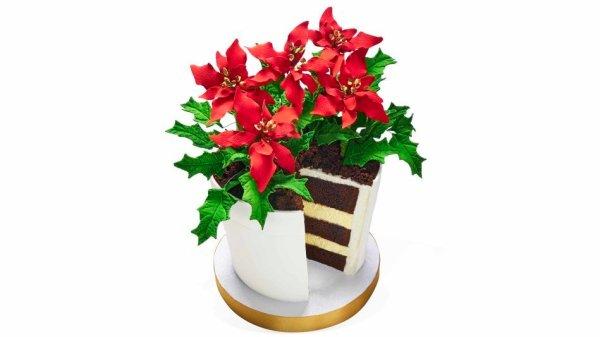 Made in Heaven Cakes seen on Oprah's favorite things 2016