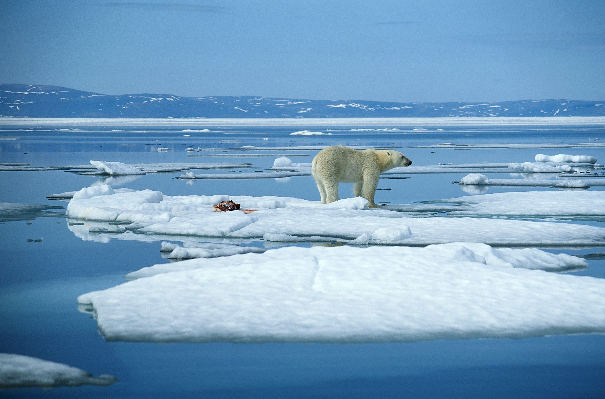 Image result for PHOTOS OF CONSERVATIVE REPUBLICANS DENYING CLIMATE CHANGE