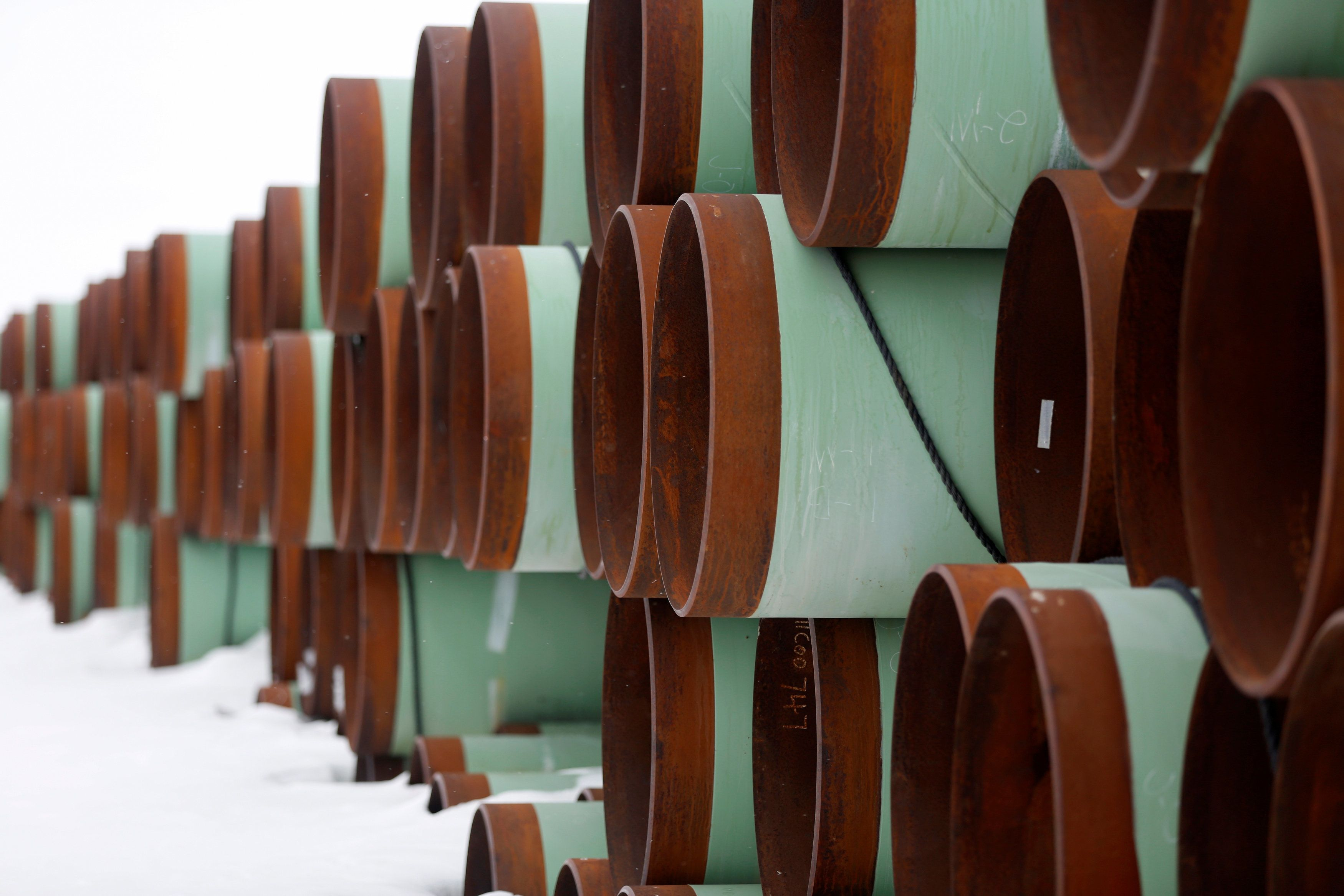 'Tremendous Victory' For Wildlife: Federal Judge Invalidates Keystone XL Pipeline Permit 1