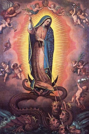 Image result for lady of guadalupe unborn