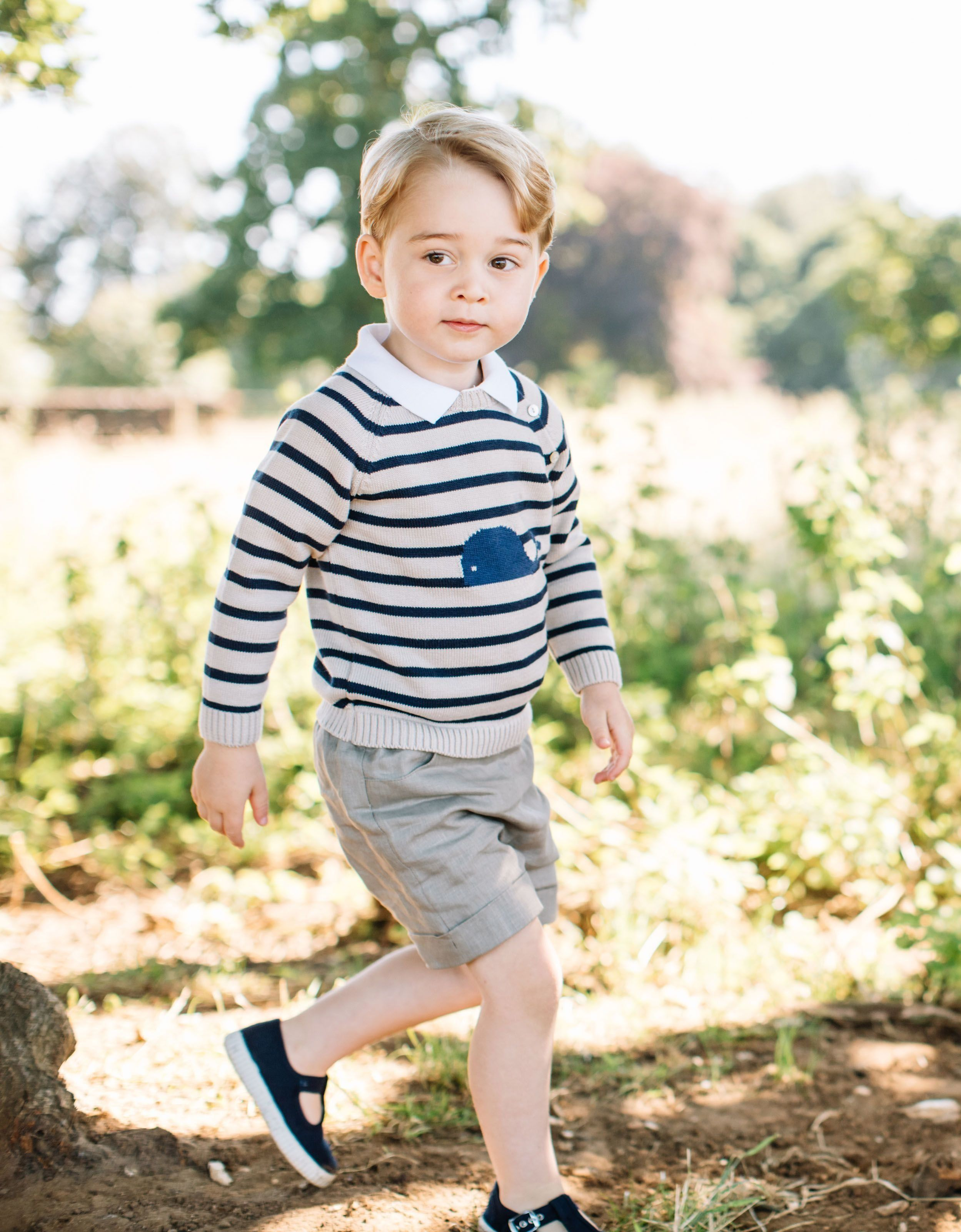 Official portrait released for Prince George's third birthday,taken at Sandringham Estate in Norfolk in mid-July 2016.&