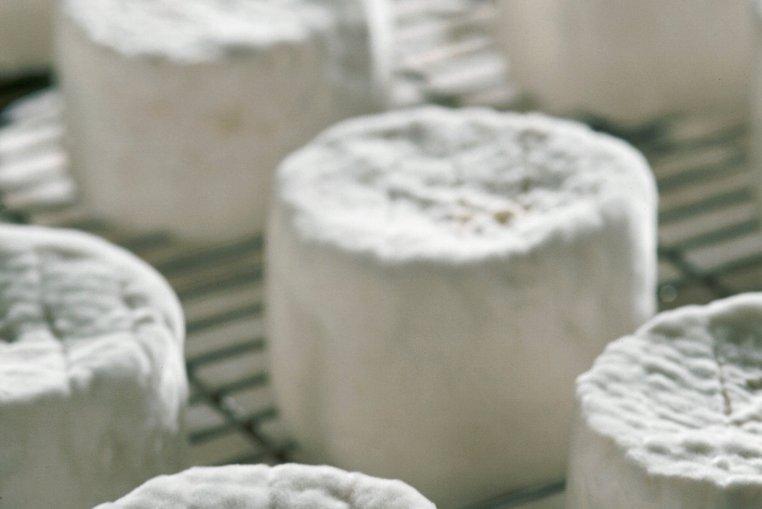 Les fromages rappelés ont été commercialisés sous les marquesLincet...