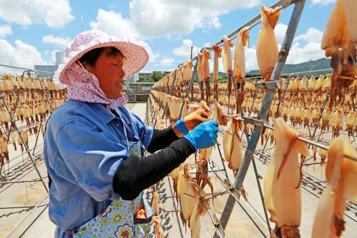 A food company employee dries squid on Aug. 2, 2019, in Zhoushan, China.
