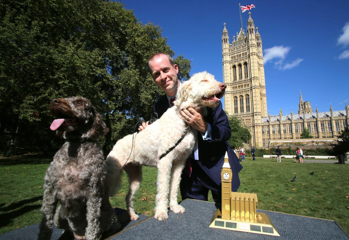Jonathan Reynolds MP, with Labradoodles Clinton (right) and Kennedy is announced as the winners of the 24th Westminster Dog of the Year competition.