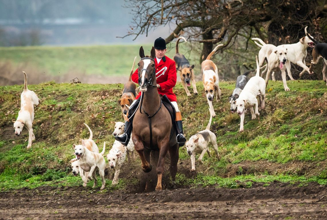 Members of the Grove and Rufford Hunt, formed in 1952.