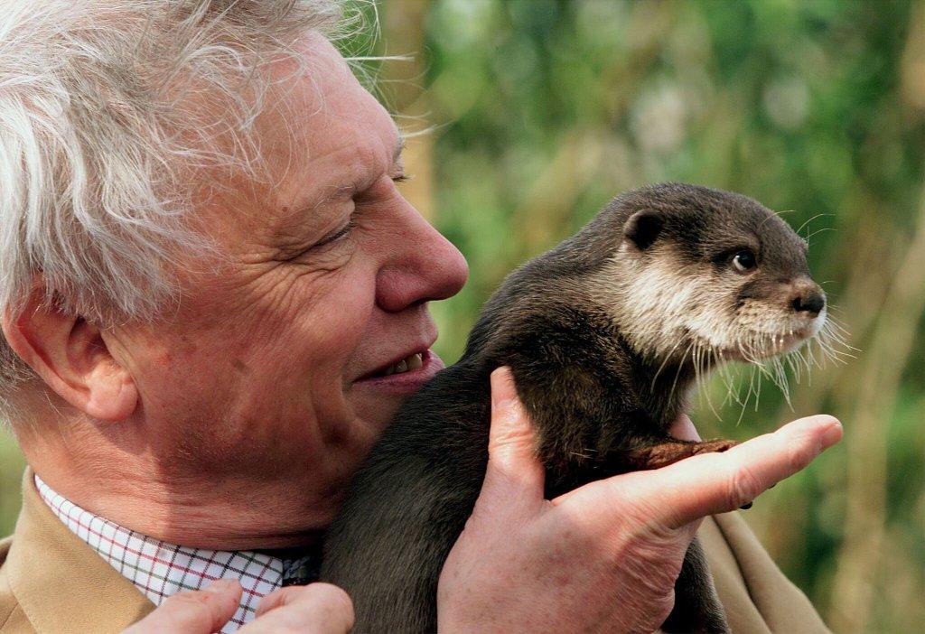 Prince George 'So Sad' Watching David Attenborough Doc, Says William