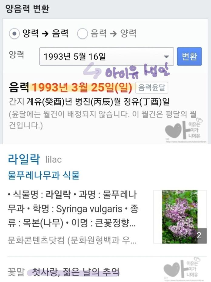 IU fan page