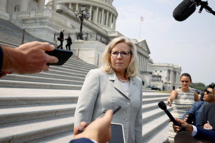 Rep. Liz Cheney lost her leadership position in the House Republican caucus because she refused to stop criticizing Trump.