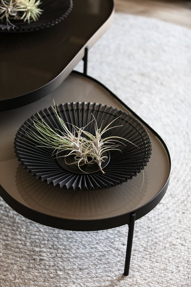Gubi bowl with airplant