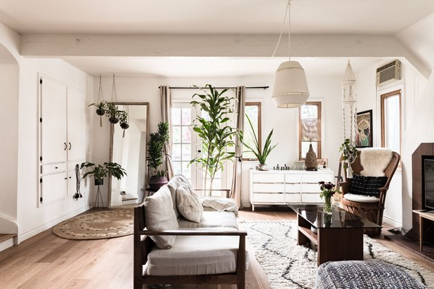 Living room with many plants