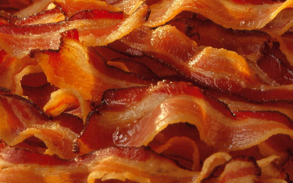 Porcos alimentados com maconha produzem bacon mais saboroso