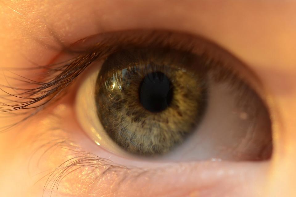 Lentes de contato high-tech podem ajudar a corrigir daltonismo