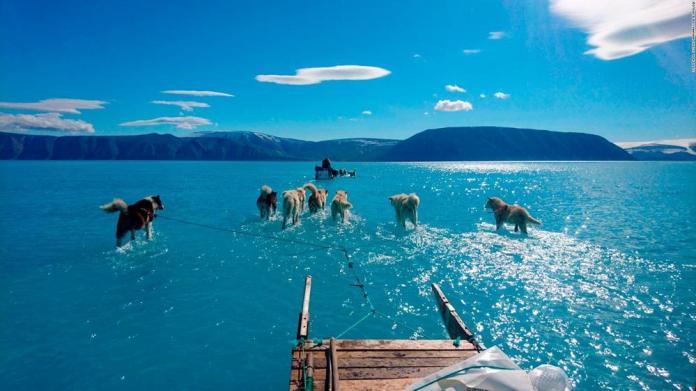 A imagem de 2019 do pesquisador do clima Steffen Olsen andando sobre o gelo derretido do fiorde Inglefield, na Groenlândia, percorreu o mundo; em vez de 3°C, a temperatura registrada foi cinco vezes mais alta.