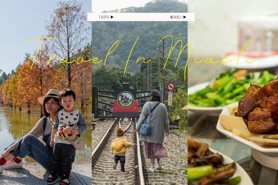 苗栗景點 落羽松秘境、必嚐客家菜、聽蟲鳴民宿,景點+住宿+美食 親子行程完整分享