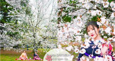 【京都】京都御苑 與櫻花拍照密技教學 2017賞櫻景點推薦 4/10滿開