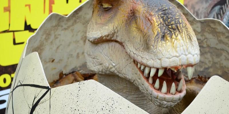 恐龍夢公園-重返失樂園│喜愛恐龍的你,快來這裡感受一下暴龍的怒吼吧!