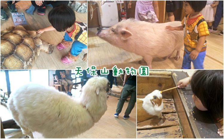 天保山動物園│大阪港景點,讓小孩跟動物多接觸的全新體驗。