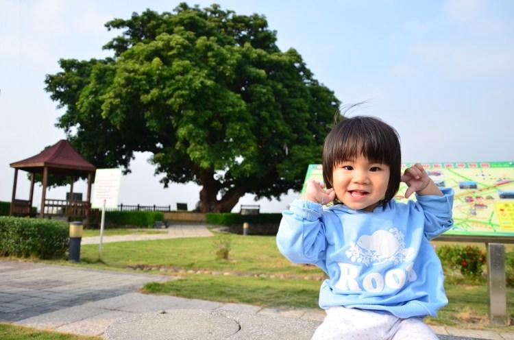 田中景點_夫妻樹│彰化田中三民里景點,百歲茄苳老樹,戲說台灣也有在這演喔~