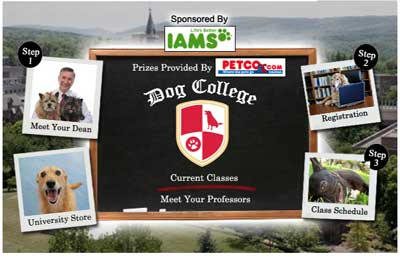Iams Sponsors Free Online Dog College Program