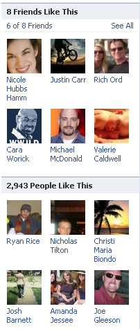 Facebook Pages Show you how many people like it and how many of your firends do.