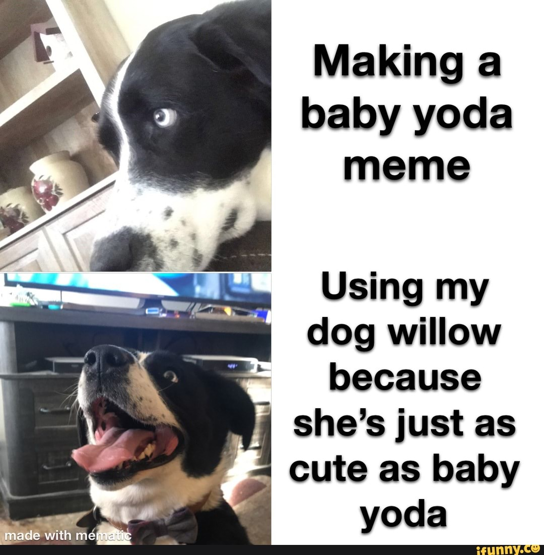 18 Hilarious Baby Yoda Star Wars Memes That Ll Make You Lol King
